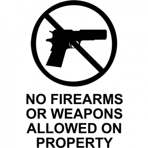 "No Weapons Die Cut Vinyl Decal | 6"" x 4"""