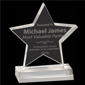 Most Valuable Partner Star Acrylic Award