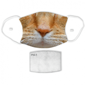 Orange Tabby Cat Adult Face Mask