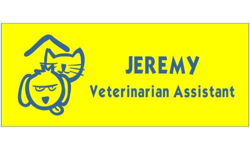Veterinary Rectangle 2 Line Name Tag A
