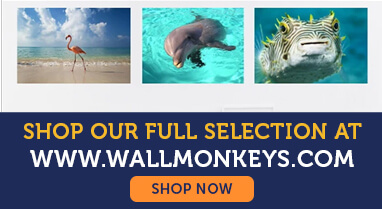 Wall Decals from Wall Monkeys
